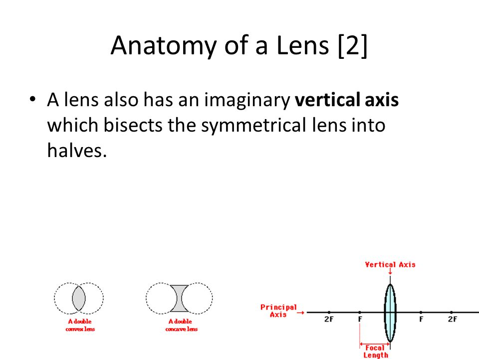 Anatomy of a Lens [2] A lens also has an imaginary vertical axis which bisects the symmetrical lens into halves.